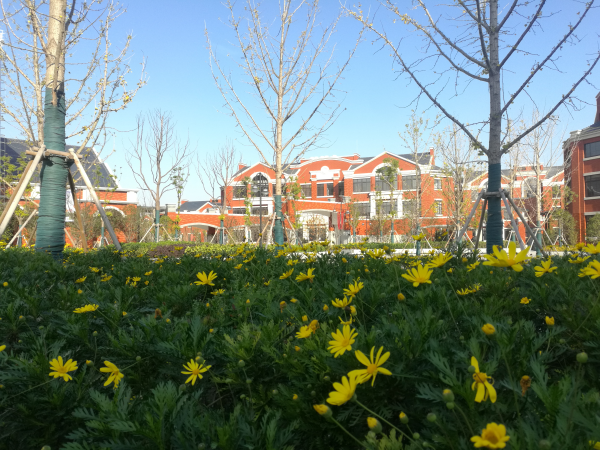 上海市实验学校附属东滩学校校园美景3