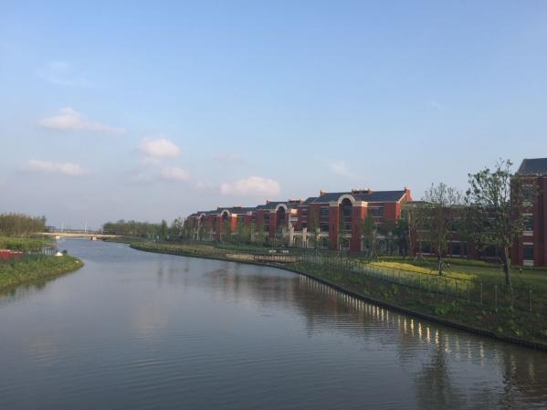 上海市实验学校附属东滩学校校园美景4